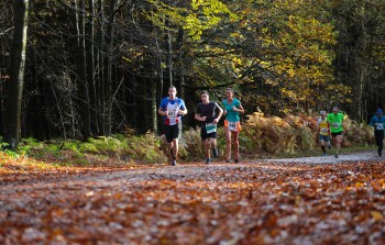 Robin Hood Trail Runs - Complete - Image 1